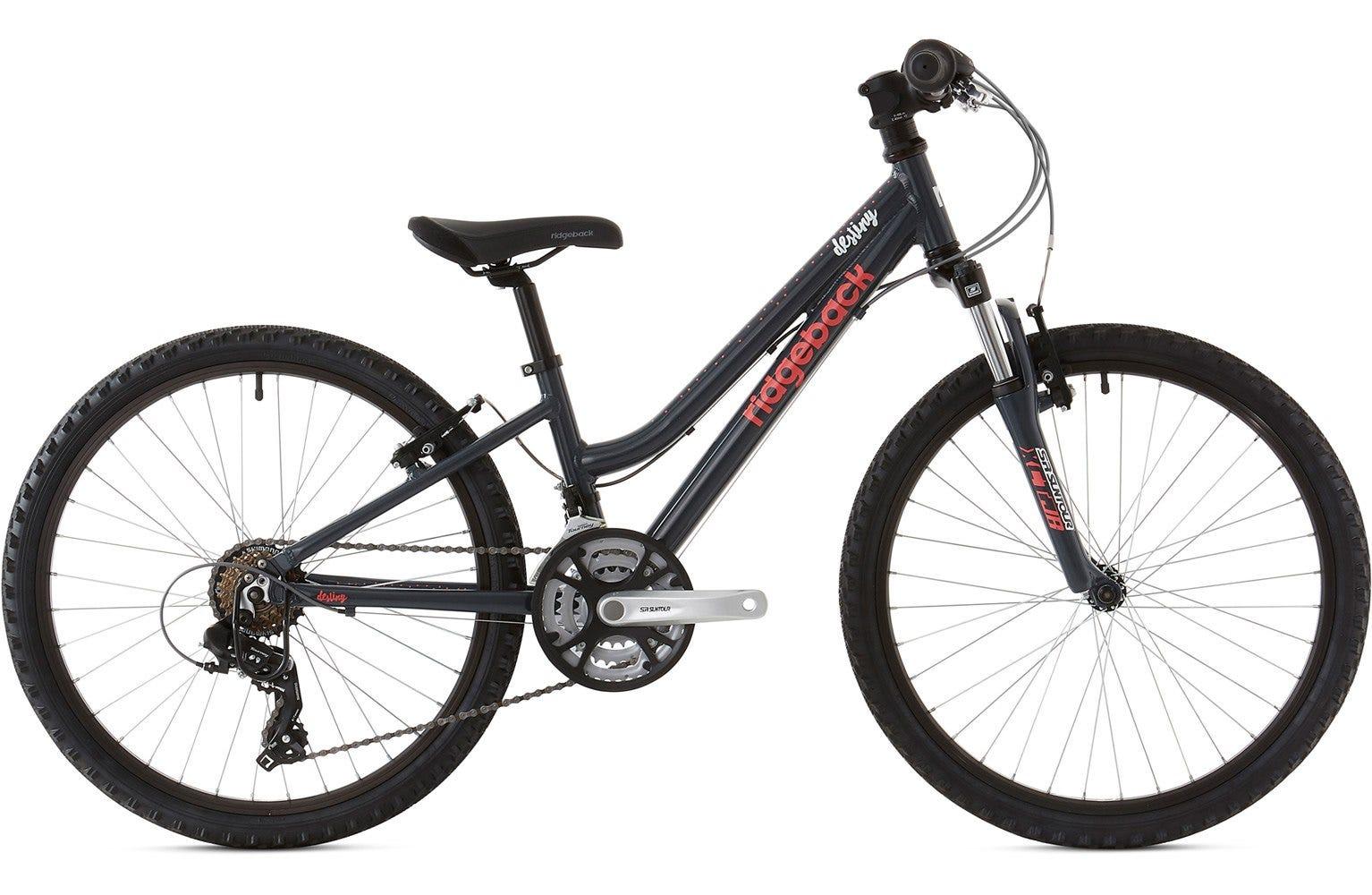 Ridgeback 2020 Destiny 24 Inch Wheel Charcoal