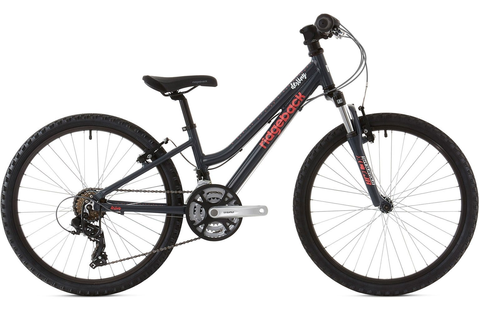 Ridgeback 2020 Destiny 24 Inch Wheel Charcoal Ex Display Bike