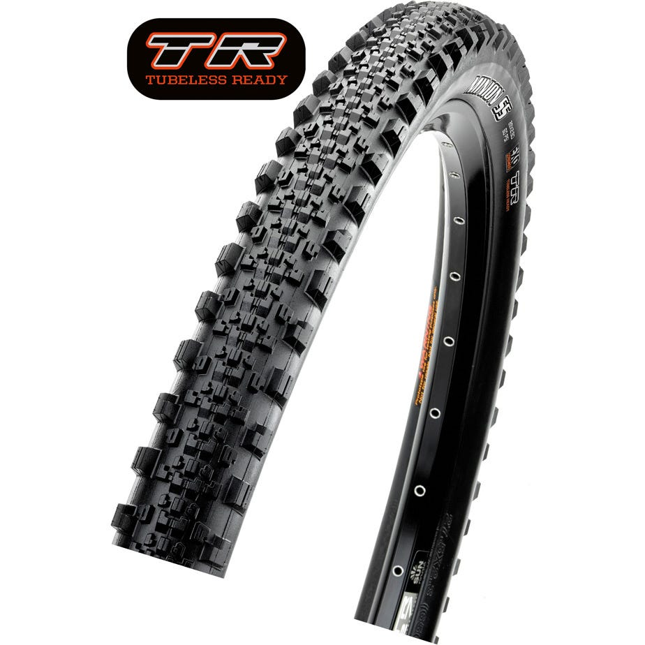Maxxis Minion SS Dual Compound TR Tyre
