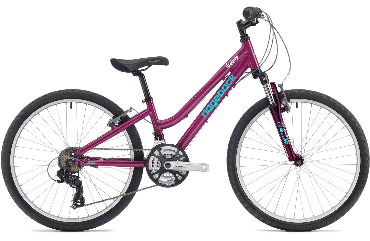 Ridgeback Destiny 24 inch bike wheel purple