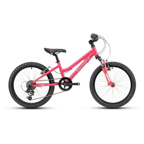 Harmony 20 Inch Wheel Pink Sample Bike (Used)