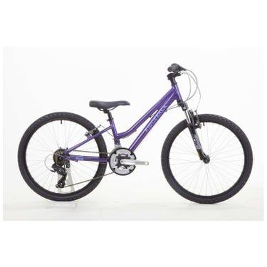 Destiny 24 Inch Wheel Purple Brand Sample (Used)