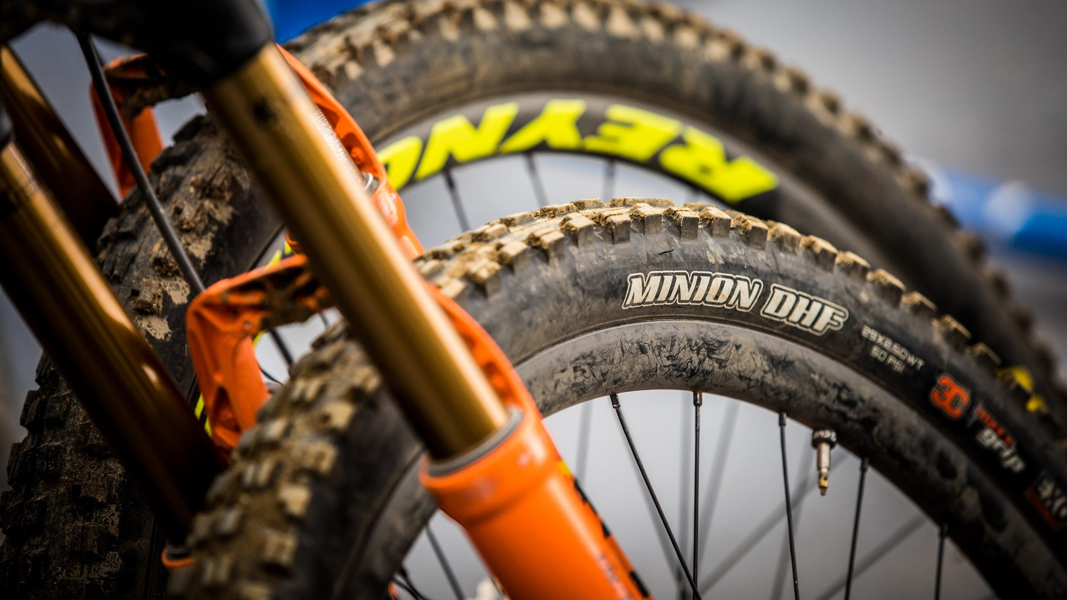 The Maxxis Minion hits 20 years